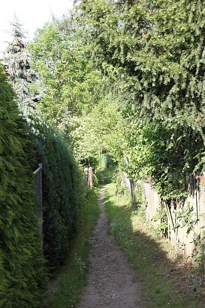 Lauensteinweg